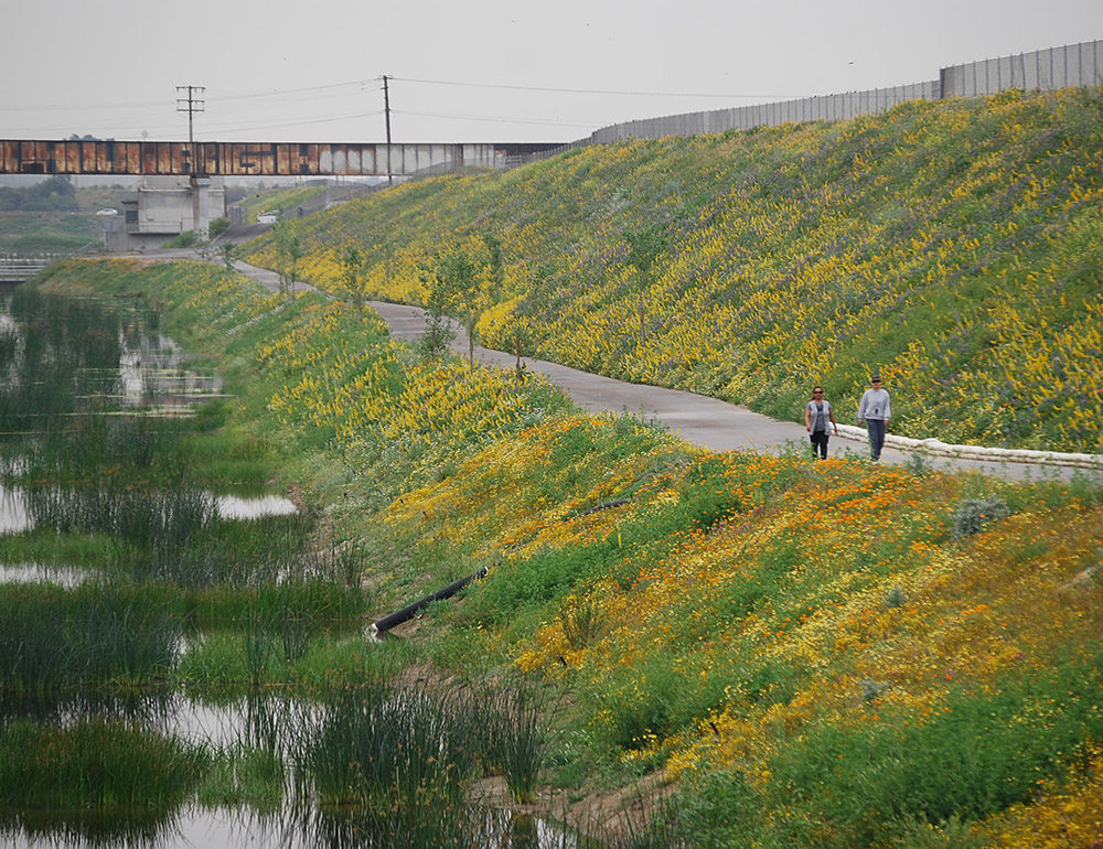 Dominguez Gap Wetlands and Recreation Study